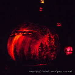 Louisville Pumpkins 5