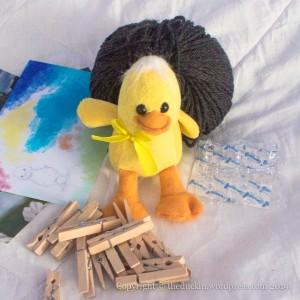 Walldrobe Duck