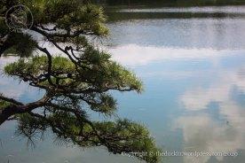 Kiyosumi Garden 2