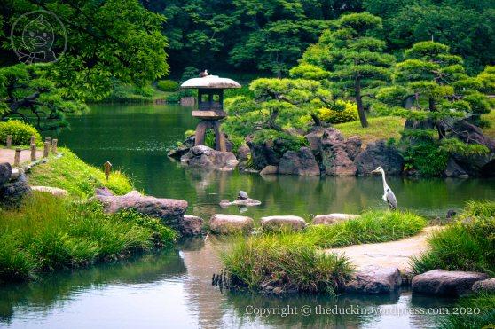 Kiyosumi Garden 7