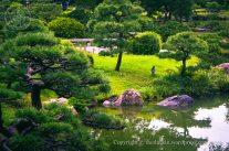Kiyosumi Garden 4