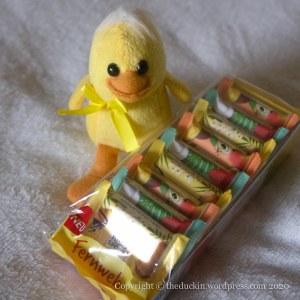 Fernweh duck